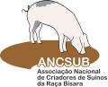 ANCSUB